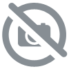 CHLORE 4 ACTIONS GALET 250G 1 KG